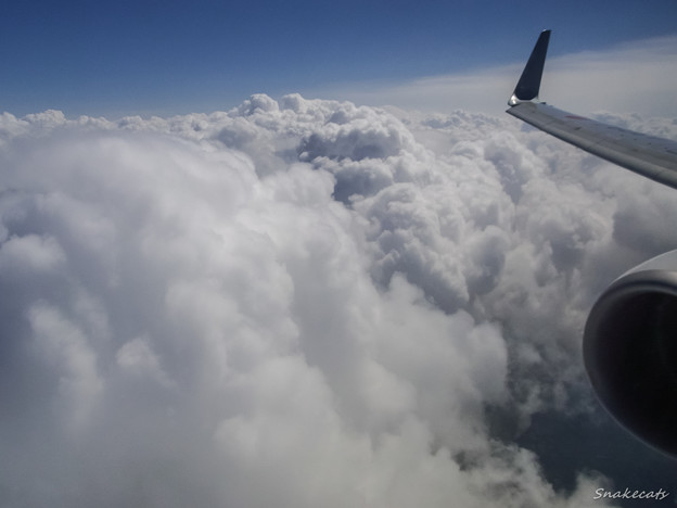 Photos: Flying In The Clouds