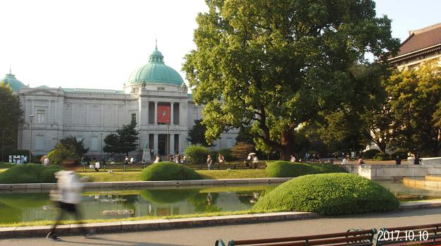 Photos: 国立博物館1349
