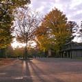 朝の公園936asa