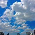 写真: 西日本では