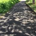 夏の帰り道