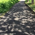 写真: 夏の帰り道