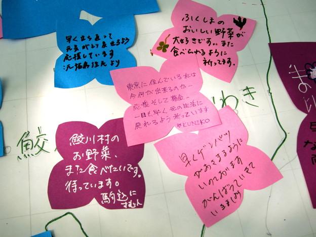 Fukushima_20110508_12