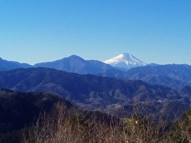 写真: 高尾山からの富士山