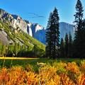 Photos: Beautiful Landscape(23)