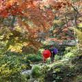 晩秋な三渓園