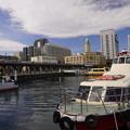 写真: 桟橋