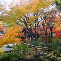 Photos: 横浜公園