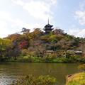 写真: 三重塔