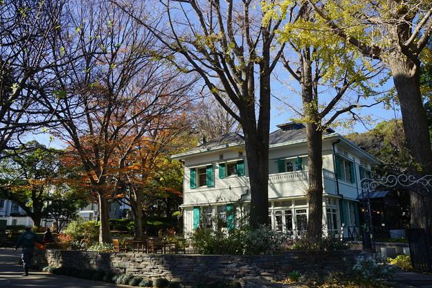 写真: エリスマン邸