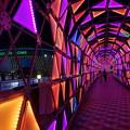 写真: 色のトンネル