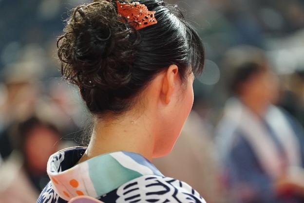 Photos: 郡上踊り