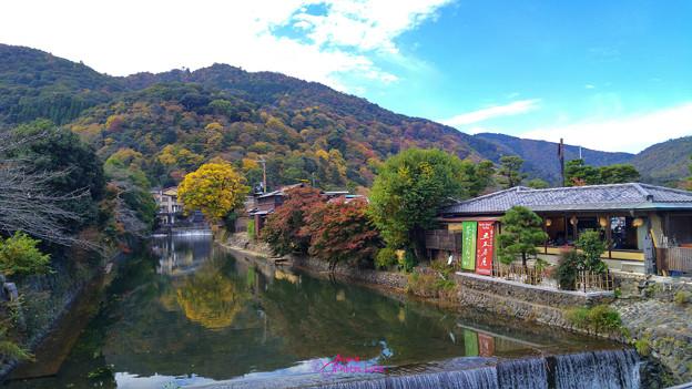 京都嵐山初訪