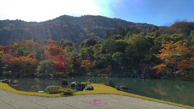 日式庭院之美