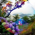 写真: 1499438129_73