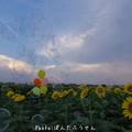 Photos: 1500906655_50