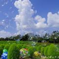 Photos: 1502840156_68