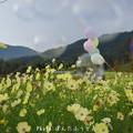 Photos: 1504471579_32