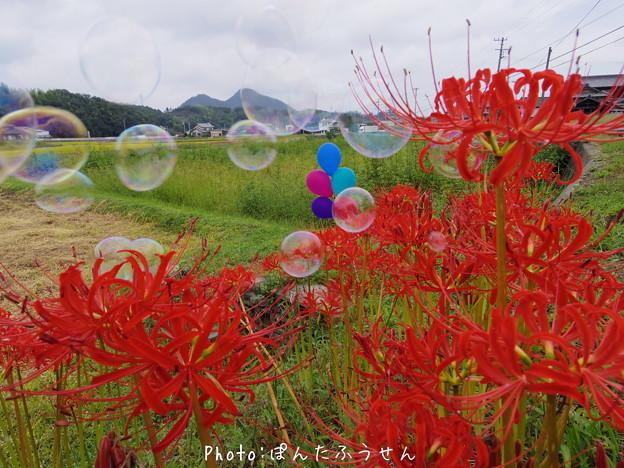 Photos: 1506724980_55