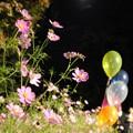 写真: 1507125735_18