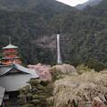 写真: 那智熊野大社 17