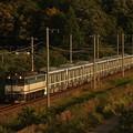写真: EF65メトロ13000系甲種 東海道本線彦根~米原01