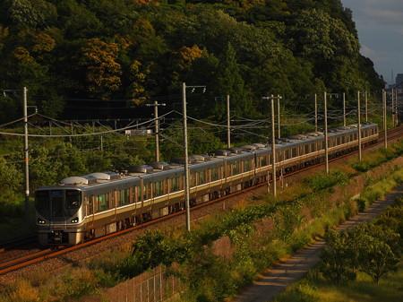 225系新快速 東海道本線彦根~米原