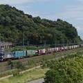 写真: EF210貨物 東海道本線彦根~米原01