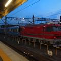 写真: EL120 名市交3000系甲種 名鉄常滑線大江駅08