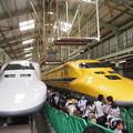 写真: 700系とドクターイエロー 新幹線なるほど発見デー