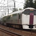 写真: 215系ホリデー快速ビューやまなし 中央本線豊田~八王子