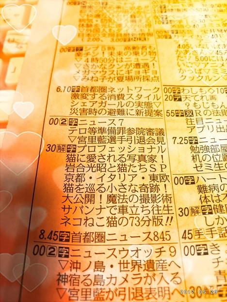 Photos: 岩合光昭NHK特集 ~溢れ出てるハートフル