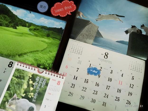 Photos: 8月は夢花火わたしの心は雨模様 ~葉月Start