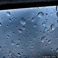 写真: Hard Rain Drop ~8.1大雨Go~雨粒の数だけ