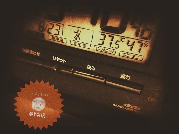 Photos: 37.5℃ 47% ~2週間ぶりの猛暑