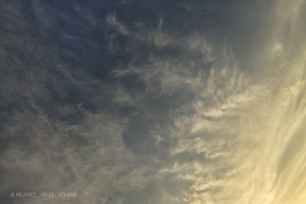 Photos: 16:55sunset sky ~クイック、秋の高い夕空