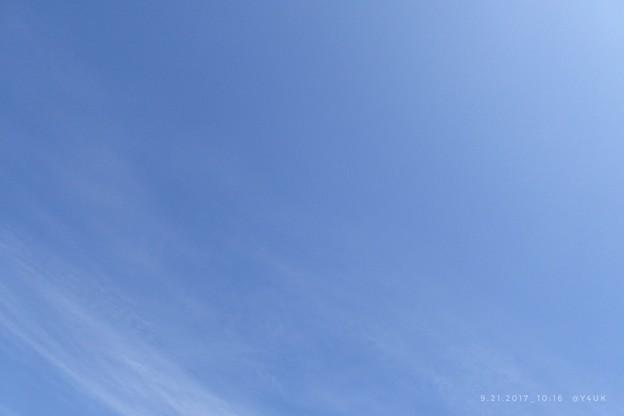写真: 10:16 autumn blue sky ~爽やか好きな空