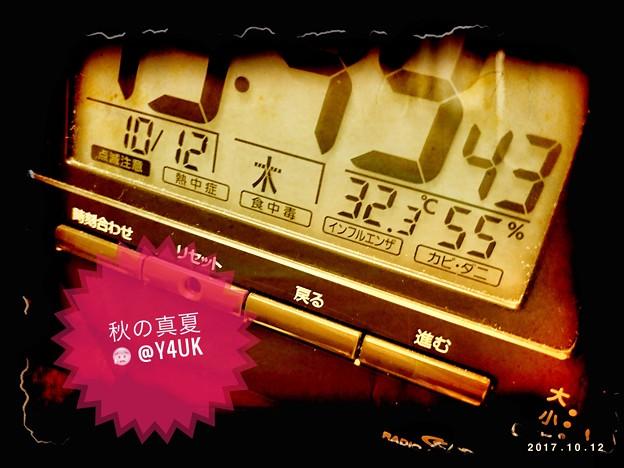 写真: 32.3℃ 55%~秋の真夏~神無月の汗~そして明日からは急降下14℃冬