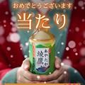 写真: 綾鷹ツイッターで当たり!~綾鷹サンタさんありがとう~小さな幸せ再び☆