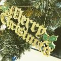 写真: Merry Christmas ~よくあるツリーのロゴ~きょうはクリスマスきょうもクリぼっち