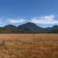 写真: 戦場ヶ原と男体山