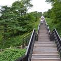 Photos: 霧降高原階段の向こうは!