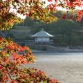 写真: 紅葉の秋