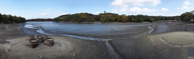 Photos: 池の水抜いてみたら!