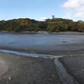 写真: 池の水抜いてみたら!