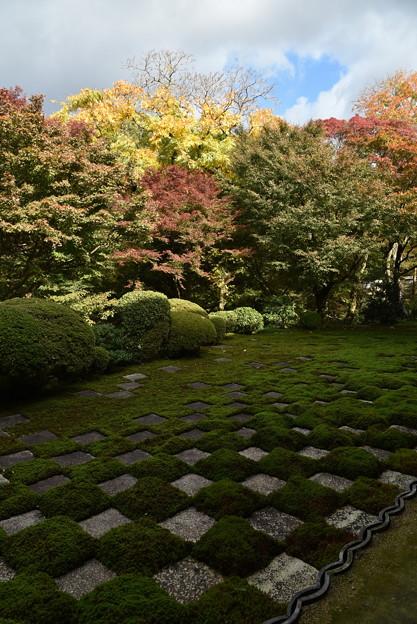 三玲の庭と紅葉