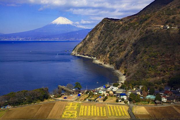 Photos: 井田から望む