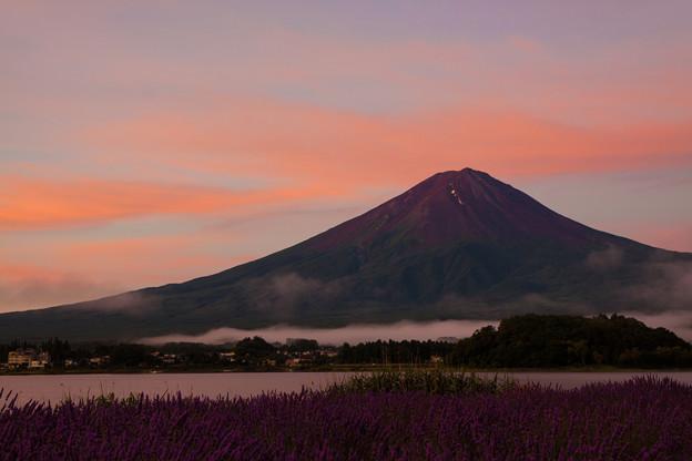 写真: 夏富士朝景色