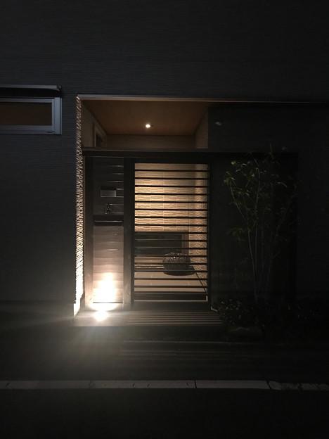 夜のお散歩にて