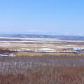 写真: 冬の釧路湿原